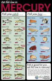 Seafood During Pregnancy Chart Pilates Health And Fitness With Jessica Fisher Superfood