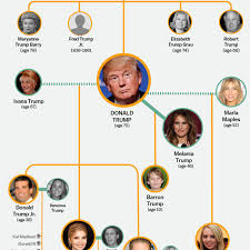 famiy tree the entire donald trump family tree in one graphic vox