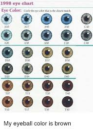 1998 Eye Chart Eye Color Circle The Eye Color That Is