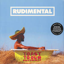 <b>Rudimental</b> - <b>Toast To</b> Our Differences - Vinyl 2LP - 2019 - EU ...