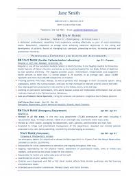bestresumeformatforgraduates best resume format for graduates free    best example of resume format example of best resume format best resume format free download