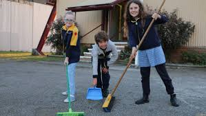 This month give Scouts a job | Port Stephens Examiner | Nelson Bay, NSW