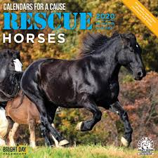 United In Light Draft Horse Sanctuary 2020 Rescue Horses 16 Month 12 X 12 Wall Calendar By Bright Day Calendars Calendars For A Cause Wall Calendar