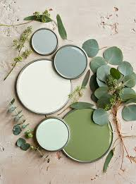 here s everything you need to know about vegan paint