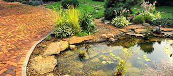 how to build a rock garden without
