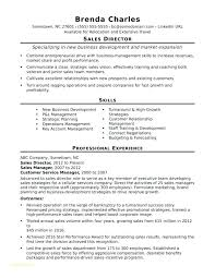 Junior Accounts Manager Resume Sample Resume For A Social Media ...