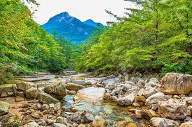 River with rocks and stones in mountain forest in South Korea Stock Photo -  36849163