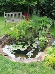 ponds for small gardens ponds backyard