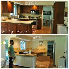 Painting New Kitchen Cabinets Do It Yourself Painting Kitchen Cabinets Home Design Ideas