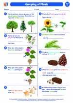 In this science worksheet your child draws a line joining each whole plant with the part of it that will in this science worksheet, your child learns about edible plants and identifies common produce as. Grouping Of Plants Third Grade Science Worksheets And Study Guides