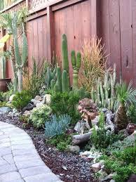 desert garden ideas. Plain Desert Admirable Desert Garden Landscaping Ideas For Home Yard With