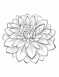 Just click on button print at the right for printing. Printable Adult Coloring Pages Flowers Beautiful Free Flower Coloring Pages For Adults At Getdrawings Meriwer Coloring