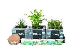 planter box herb garden pots containers vegetable indoor outdoor kit home depot pot herb garden starter kit