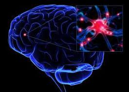 Электромагнитное излучение влияние на человека способы защиты Воздействие электромагнитных полей и излучений на организм человека