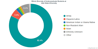 University Of Utah Index Score Chart Utah State University Diversity Racial Demographics Other