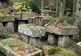 a complex rock garden