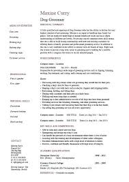 Example Of Resume With Job Description Lifeguard Sample Resume