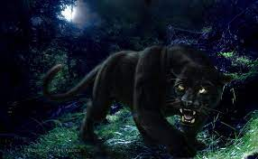Black Panther Backgrounds - Wallpaper Cave