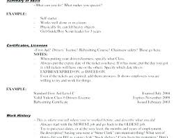 Retail Job Resumes Good Resume Examples For Retail Jobs Examples Resume Samples For