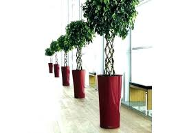 tall flower pots tall indoor plant pots tall indoor plant pots tall flower pots self watering tall flower pots