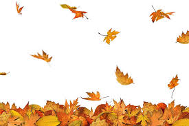 Image result for clipart Fall leaves