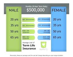 Term Life Insurance Online Quote Whole Life Insurance Quotes Online Plus Term Life Insurance Quote 23