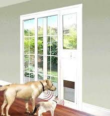 back door screen door sliding glass door pet door insert house design back to post dog door for sliding glass pet doors screen door hits door knob