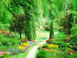 Beautiful Green Scenery Pictures
