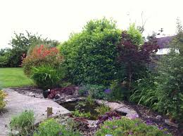 Small Picture Tree and Hedge CuttingGarden Design Landscape Gardening job in