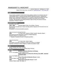 professional resume ...