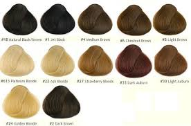 Lace Wig Hair Color Chart Details About 8a Indian Remy Human Hair Silk Base Wig Deep