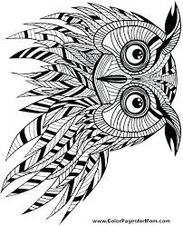 Owl Coloring Pages For Adults Baroque Owl Coloring Pages Big