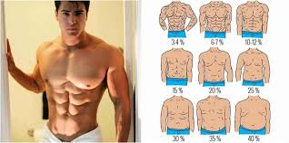 What Is Your Body Fat Percentage Bf Runner Rocky