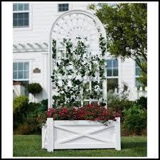planters with trellises to enlarge