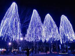 christmas tree lighting ideas. Outdoor Christmas Lights Lighted Tree Outside Lighting Ideas