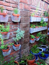 Small Picture Living Walls Bring Container Gardening Indoors Hgtv 223 best