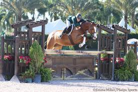 Kelley Farmer and Patricia Griffith Conclude WEF with Championship  Tricolors in High Performance Hunters - Phelps Sports