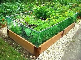 raised garden fence ideas easy vegetable garden brilliant vegetable raised garden bed vegetable garden bed ideas