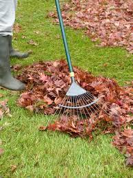 Kitchen Scrap Gardening How To Compost Kitchen Waste Hgtv