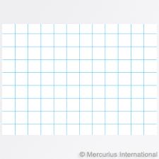 Mercurius Usa Composition Book 21x29 7 Cm Portrait Format