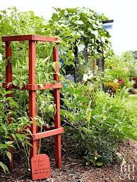 homemade tomato cages bamboo tomato garden garden gardening tomatoes vegetable tomato cage diy bamboo tomato plant