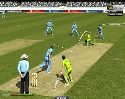 Image result for cricket play ground