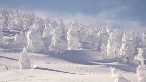 Download Snow Japan Wallpaper Hd Backgrounds Download Itlcat