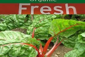 health benefits of organic foods versus processed foods healthy  organic non organic and processed foods sometimes vary in nutrient content