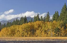 Barton Health Cycle Through The Fall Colors