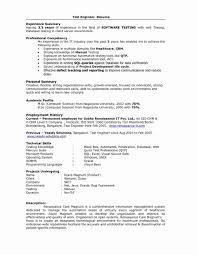 Template Professional Resume Format Doc Sample Resume