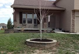retaining wall block around tree root round designs