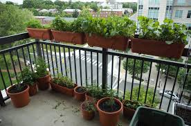 Small Picture serenity garden amazing balcony garden ideas 3 small balcony