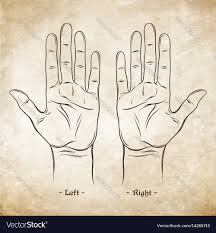 Palmistry Or Chiromancy Chart Blank Template