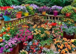30 Small Garden Ideas U0026 Designs For Small Spaces  HGTVContainer Garden Ideas Photos